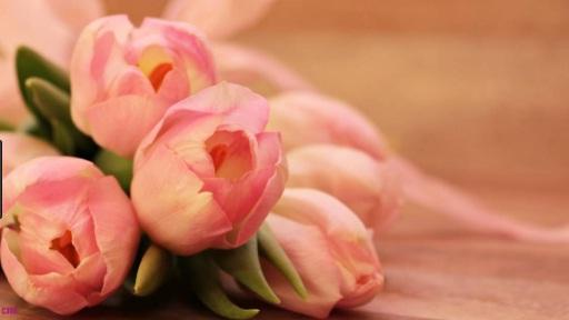 fiori da regalare per un compleanno - Fiori Da Regalare Ad Una Ragazza Per Compleanno