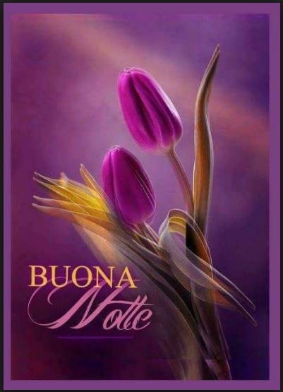 Immagini Belle Buonanotte Con Fiori Invito Elegante