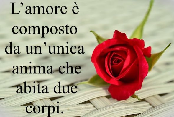 Frase Dell Amore