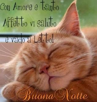 Buonanotte Con Affetto E Amore - Buonanotte Con Affetto